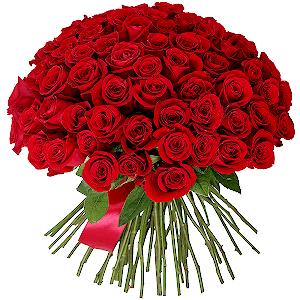Букет из 75 красных роз