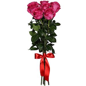 Букет из 7 розовых роз - премиум